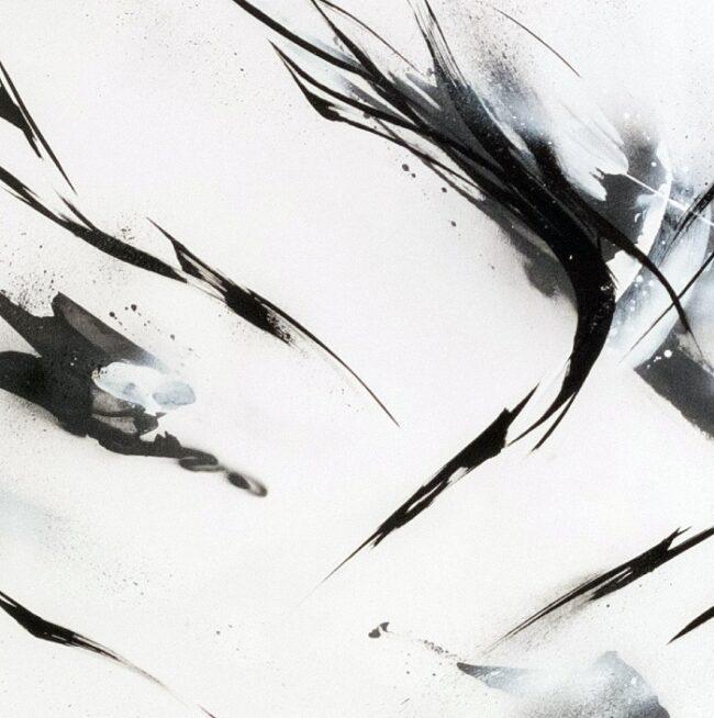 Kuroshiro C